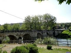 Alar del Rey (santiagolopezpastor) Tags: espagne españa spain castilla castillayleón palencia provinciadepalencia agua water puente pont bridge