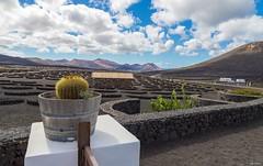 Lanzarote (Laurent VETTER) Tags: paysage voyage ngc aride lanzarote volcan canaries île