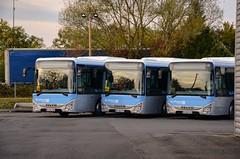 Sainte-Geneviève-des-Bois : Peu avant leur mise en service, les frères IVECO squattaient le fond du dépôt. Pour la rentrée 2018, CEAT a reçu 10 Crossway LE afin de renouveler le parc des lignes 107, 108 et 109 notamment. (20.09.2018) (thomas_chaffaut) Tags: transdev transdevceat ceatransports iveco crossway crosswayle idfm blue bus autobus transport instatransport depot row kingstransports kingsvehicles tvtransport mywork atwork lovemyjob discover neverstopexploring iledefrancemobilités