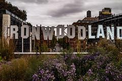 Ironwoodland (misterperturbed) Tags: newyork thehighline