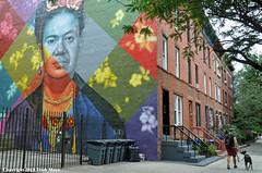 Frida & Diego (Trish Mayo) Tags: murals art streetart kobrastreetart fridadiego fridakahlo diegorivera fence edoardokobra