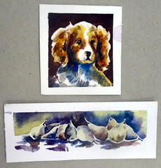 Small format, by Alice S. - DSC03973 (Dona Minúcia) Tags: art painting watercolor study paper smallformat dog stilllife pear fruit food animal arte pintura aquarela pequenoformato cão cachorro naturezamorta pera fruta alimento comida
