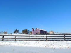 Purple Barn (George Neat) Tags: purple barn farm snow fence somerset county pa pennsylvania landscape scenic buildings structures georgeneat neatroadtrips patriotportraits