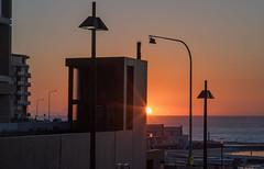 City sunrise (OzzRod (catching up)) Tags: pentax k1 smcpentaxk135mmf25 city dawn sunrise silhouettes lights canoepool newcastle