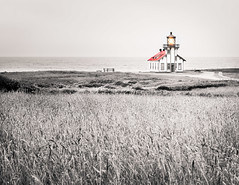 Lighthouse at Cabrillo point (Alberto Vanoli) Tags: costalview mendocino landscape historic bwtoned nature manmade lighthouse bw photo fields sea