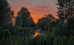 Lockside (music_man800) Tags: sunset sun sunny set dusk afternoon evening end day july 2018 walk walking hike stroll river chelmer chelmsford essex paper mill lock riverside towpath orange sky blue colours colourful dark green trees nature wildlife outdoors outside flora fauna landscape scene scenery uk united kingdom view gorgeous colour color bright natural light lighting canon 700d adobe lightroom creative cloud edit photography artistic young