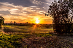 Monday evening (Peter Leigh50) Tags: leicestershire landscape landschaft sunshine sunset sunlight countryside fujifilm fuji field farmland farm hedge trees sky clouds xt10