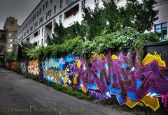 Colours of Color (HWW) (13skies (broke my wrist)) Tags: colour color graffiti graffitialley toronto painted alleyway city life beautiful love artistic talent walls windows happywallwednesday happywindowwednesday buildings apartments living walk