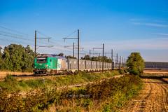 02 octobre 2018 BB 75416 Train 467407 Bortdeaux-Hourcade -> Tonneins Tonneins (47) (Anthony Q) Tags: 02 octobre 2018 bb 75416 train 467407 bortdeauxhourcade tonneins 47 ferroviaire france fret sncf lotetgaronne bb75000 bb75400 bb75416 wagon aquitaine nouvelleaquitaine