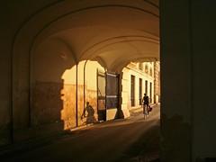 Cyclist Following His Shadow (Wolfgang Bazer) Tags: cyclist radfahrer radler schatten shadow hofburg wien vienna österreich austria evening sun abendsonne