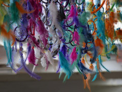 Catching Dreams (Steve Taylor (Photography)) Tags: dreamcatcher feathers hoops net stall shop store colourful newzealand nz southisland canterbury christchurch newbrighton