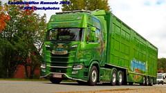 IMG_1639 LBT_Ramsele_2018 pstruckphotos (PS-Truckphotos #pstruckphotos) Tags: pstruckphotos pstruckphotos2018 lastbilsträffen lastbilsträffenramsele2018 lastbilstraffen lastbilstraffense ramsele truckmeet truckshow sweden sverige schweden truckpics truckphoto truckspotting truckspotter lastbil lastwagen lkw truck scania volvotrucks mercedesbenz lkwfotos truckphotos truckkphotography truckphotographer lastwagenbilder lastwagenfotos berthons lbtramsele lastbilstraffenramsele lastbilsträffenramsele lorry finland finnland scandinavia skandinavien
