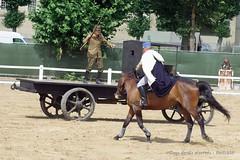1914-1918 - La reddition (17) (Breizh56) Tags: france saumur carrouseldesaumur2018 pentax 19141918