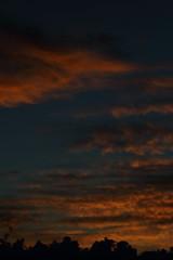 Sunrise 10 21 2018 003 (Az Skies Photography) Tags: sun rise sunrise morning dawn daybreak sky skyline skyscape clouds cloud rio rico arizona az riorico rioricoaz arizonasky arizonaskyline arizonaskyscape arizonasunrise red orange yellow gold golden salmon black canon eos 80d canoneos80d eos80d canon80d october 20 2018 october202018 102018 10202018
