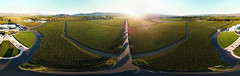 Opus One Winery (samayoukodomo) Tags: djimavicpro mavicpro quadcopter takingthedroneouttogethigh aerialview aerialphotography droneview dronepointofview drone dronephotography winecountry vineyards equirectangular 360 360° aerial lifeis360 birdseyeview