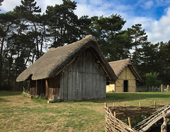 365-2018-281 - Anglo Saxon village (adriandwalmsley) Tags: anglosaxon weststow
