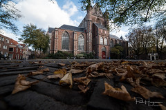 Leaf and church @ Leiden (PaulHoo) Tags: nikon d750 ultrawideangle wideangle city cityscape 2018 samyang 14mm leiden leaf autumn church religeon square lowpov