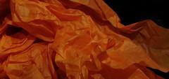 Crinkled (mkennedy2193) Tags: macro monday crinkled wrinked folded creased