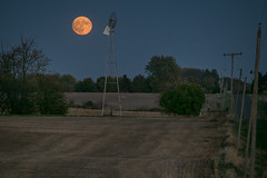 Harvest moon Rising over NW Illinois (Thomas DeHoff) Tags: full harvest moon illinois windmill rural farm sony a77mk2