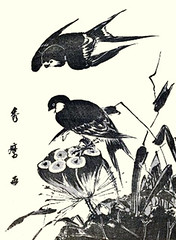 Sacred lotus and barn swallow (Japanese Flower and Bird Art) Tags: flower sacred lotus nelumbo nucifera nelumbonaceae bird barn swallow hirundo rustica hirundidae hidemaro kitagawa ukiyo woodblock print japan japanese art readercollection