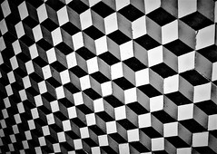 IMG_9225 (olivieri_paolo) Tags: supershots monochrome bw abstract