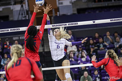 Washington Arizona-FT4I2256 (Pacific Northwest Volleyball Photography) Tags: volleyball ncaa pac12 pac12vb womensvolleyball arizona washington uwhuskies