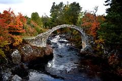 1717 Packhorse Bridge (gcobb84) Tags: bridge ancient water trees river landscape waterfall rocks motion