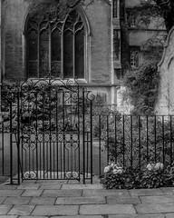 2018-08-19 & 20 Agilux Shillingford & Oxford (11 of 26) (Pete K) Tags: agilux agimatic oxford church flowers gate railings