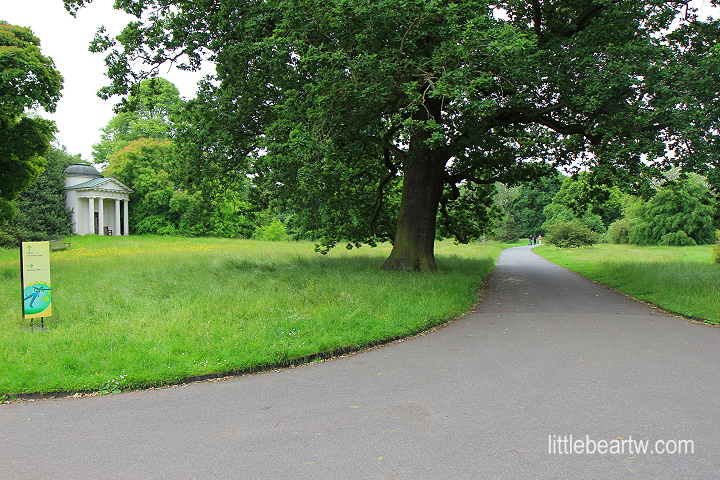 邱園Kew Gardens-11