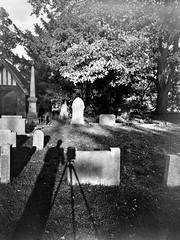 Shadow portrait in churchyard (jhotopf) Tags: intrepid4x5mk3 pyropmk berggerpancro400 blancoynegro noiretblanc blackwhite bergger intrepidcamera intrepid4x5 nikkor 90mmf45
