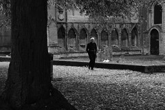 Kicking Leaves (Bury Gardener) Tags: ely cambridgeshire england eastanglia uk streetphotography street streetcandids snaps candid candids people peoplewatching folks 2018 nikond7200 nikon strangers bw blackandwhite monochrome mono