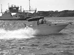Båt sedd från färjan mellan Hönö och Lilla Varholmen 28 augusti 2018 (biketommy999) Tags: västkusten havet sea sverige sweden 2018 svartvitt blackandwhite båt boat
