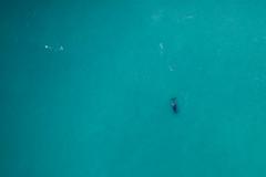 10003329.jpg (KevinAirs) Tags: kevinairs ocean travel westernaustralia ©kevinairswwwkaozcomau whale kimberleys landscapes aerial australia sea au