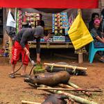Tongkonan Nonongan thumbnail