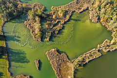 Husemersee (simon_walser) Tags: husemersee weinland water see lake green trees swistzerland dji mavic djimavic dronephotography landscape nature