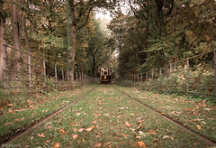 Approaching (WT_fan06) Tags: tramway manchester heaton park heritage historic history vintage old retro hull 96 nikon d3400 dslr photography beautiful composition aesthetic artsy artistic flickr 7dwf coth5 nature