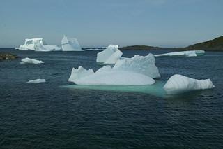Newfoundland Fishing 16