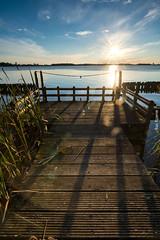 Rays and beams (ShutterBasset) Tags: sunset sundown lake polder pier wood reed sunflare flare blueskies nikon netherlands d5200 tokina1120 landscape