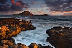 Makapu'u Sunrise Surge (David Shield Photography) Tags: makapuubeach oahu hawaii sunrise landscape seascape ocean pacific sky clouds rockycoast water color light nikon