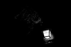 Germany - Heidelberger Schloss (arin.hakopian) Tags: lantern laterne lampe light lamp licht bw sw blackwhite schwarzweis schwarz black weiss white mono monochrom monochrome einfarbig germany deutschland canon eos70d heidelberg schloss castle