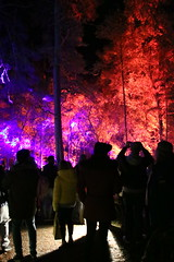 2018 - 4.10.18 Enchanted Forest (138) (marie137) Tags: forest lights trees show marie137 bright colourful pitlochry treeman attraction visit entertainment music outdoors sculptures wicker food drink family people water animation