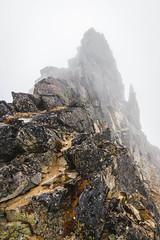 North ridge from notch (johnwporter) Tags: hiking scramble climbing mountaineering cascades northcascades mountains wilderness stephenmatherwilderness northcascadesnationalpark nationalpark corteopeak 徒步 爬行 攀登 登山 喀斯喀特山脈 北喀斯喀特山脈 山 荒野 史蒂芬馬瑟荒野 北喀斯喀特山脈國家公園 國家公園 寇特歐峯