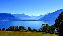 Bleu Léman (Diegojack) Tags: vaud suisse chardonne lac léman d500 nikon nikonpassion paysages bleu montagnes calme groupenuagesetciel