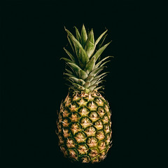 Pineapple (Clio P.) Tags: fruit pineapple experimental black background