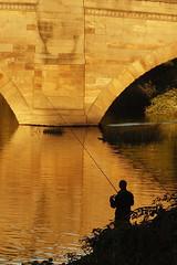Autumn gold (Camperman64) Tags: gold lowsun reflection silhouette castleford bridge riveraire