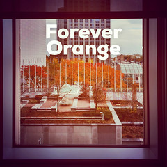 Forever Orange (spudart) Tags: chicago illinois mydeskatoneprudentialplaza onepru oneprudential oneprudentialplaza stetsonavenue tribunecontentagency usa desk mydesk work