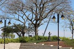IMG_1224 (Matheus da Rosa) Tags: orla guaiba porto alegre sol rs
