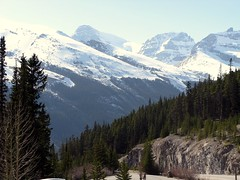 Mount Engelhard (3270m), Diadem Peak (3371m), and Mushroom Peak (3210m) (januszsl) Tags: highway93 rock rocks gestein roche skała skaly icefieldsparkway winstonchurchillrange promenadedesglaciers road highway droga szosa strasse goryskaliste rockymountains canadianrockies montagnesrocheuses mountain mountains gora berg montagne montaña montagna rocheusescanadiennes summit peak berggipfel pic mont aiguille szczyt snow schnee neige snieg ice eis glace lod america ameryka amérique canada kanada alberta jasper national park narodowy parc nationalpark jaspernationalpark
