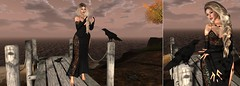 please tell him (nicandralaval1) Tags: maci rockyourrack ryr fashion secondlife secondlifefashion poses lovelysweet posefair fabia lelutka maitreya skin hair