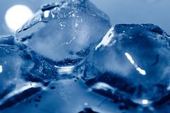 *** (donnicky) Tags: macromondays vowel blue closeup cold dof frozen ice indoors macro melting nopeople publicsec selectivefocus stilllife transparent water wet